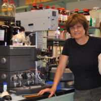 2012 Pardi Norbert in the lab.JPG