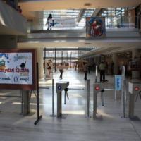 """Könyvtári Éjszaka 2011 - Időutazás: Középkor """"Félre, könyvek, doktrinák, hív az édes dáridó!"""" : tájékoztatópult középkori díszletben : könyvtári bejárat hívogató plakátokkal"""